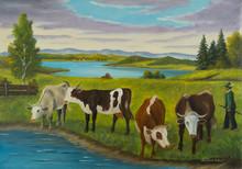 Mehrere Kühe Stehen Am Wasser...