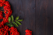 Rowan Berries, Frame On Wooden Table, Fall Concept