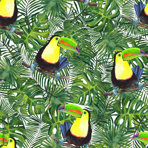 Foto auf AluDibond Ziehen watercolor pattern of tropical palm leaves and tropic bird (Ramphastos sulfuratus)