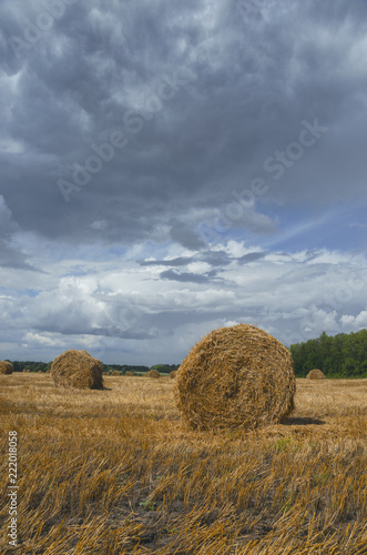Foto  Straw bales in empty field after harvesting time on a background of dark dramatic clouds in overcast sky