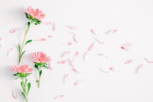 Flowers Composition. Pattern Made Of Fresh Autumn Flowers On White Background. Flat Lay, Top View, Copy Space