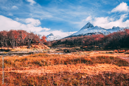 Deurstickers Oranje eclat Autumn in the Andes Mountains