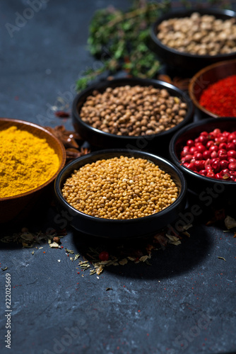 paprika, turmeric, red pepper and other fragrant spices on dark background, vertical