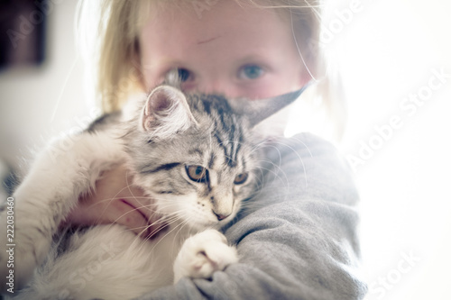Fotografia  love concept with beautiful children and sweet grey cats hugging and staying together in friendship