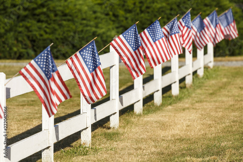a5a0be31577 Patriotic display of American flags waving on white picket fence. Typical  small town Americana Fourth of July Independence Day decorations.