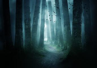 Droga przez ciemny las