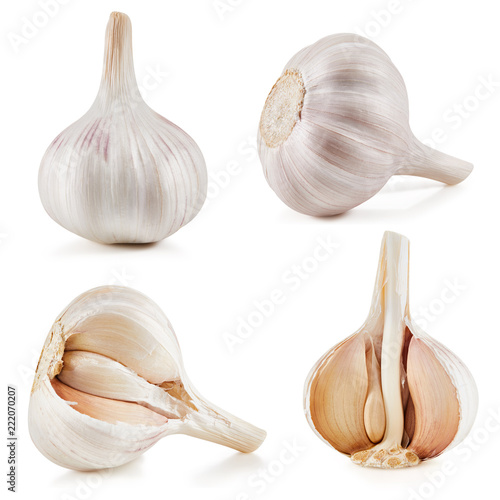 Foto op Aluminium Aromatische Garlic Isolated on white