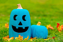 Two Teal Pumpkins Outside. Sym...