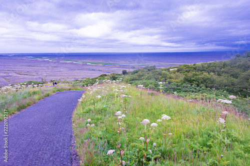 Fotografie, Obraz  Skaftafell National Park