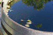 Wooden Waterdrum In Cottage Ga...