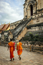 Monks Walking By Wat Chedi Lua...