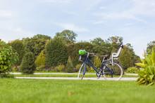 Vintage Bicycle Standing In Park With Modern Child Bicycle Carrier Seat. Retro Fahrrad Mit Modernem Kindersitz Und Fahrradhelm Steht Im Park.