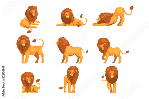 Photo Proud powerful lion character in different actions set of cartoon vector Illustr