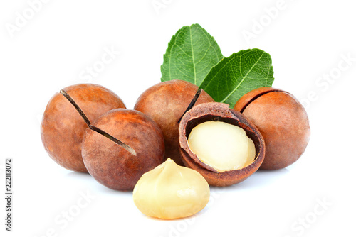 Shelled and unshelled macadamia nuts with leaf.