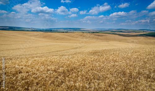Moravian Tuscany Kyjov
