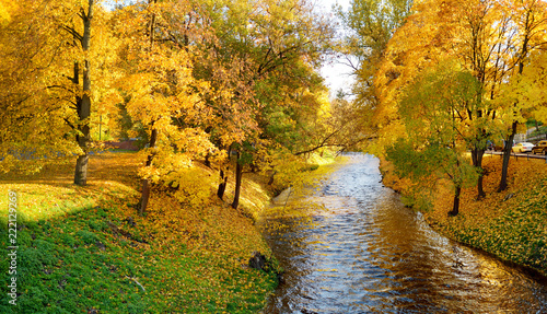 In de dag Herfst Colorful forest scene in the fall with yellow foliage. Autumn city park scenery in Vilnius, Lithuania.