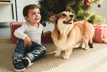 Adorable Boy And Dog Sitting Under Christmas Tree With Presents