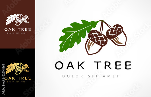 Fotografie, Tablou Oak tree logo. Acorn  vector.