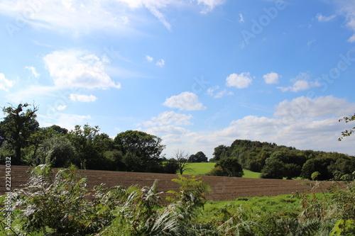 Foto  Farming field on cloudy blue sky