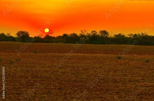 Fotobehang Oranje eclat Atardecer de Campo