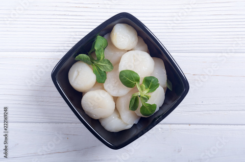 Raw scallops with salad