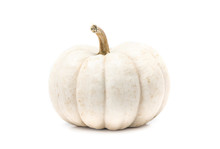 White Pumpkin With Stem Isolat...