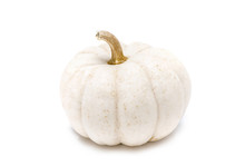 White Pumpkin With Stem Isolated On White Background Ready For Halloween Fancy Festival Decoration