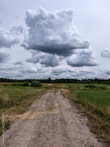 Foto op Canvas Blauwe hemel simple gravel country road in summer in forest