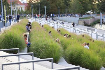 Młodzi ludzie w zielonej trawie w zatoce rzeki Odra we Wrocławiu.