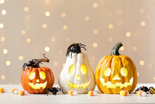 Halloween Pumpkins With Spider On A Shiny Light Background