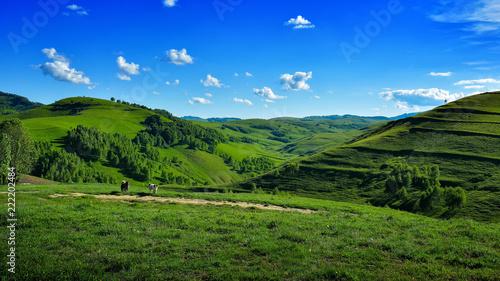 Fotobehang Landschap Landscape from Transylvania - Romania