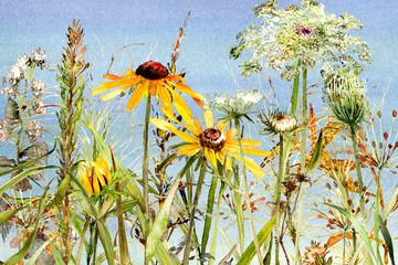 Fototapeta Współczesny watercolor wildflower meadow