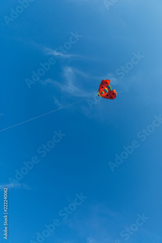 Foto op Canvas Luchtsport red kite ladybug in the sky
