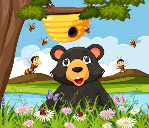 Canvas Prints Bears A bear looking at beehive