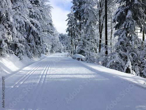 Fotografia  Wintersport I