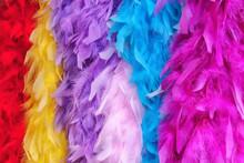 Colorful Feather Boas