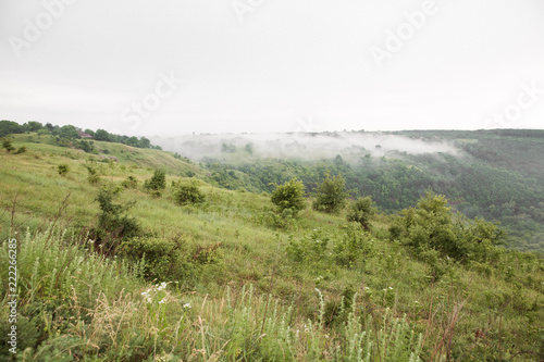 Spoed Foto op Canvas Natuur The fantastic view of nature and forest in the fog