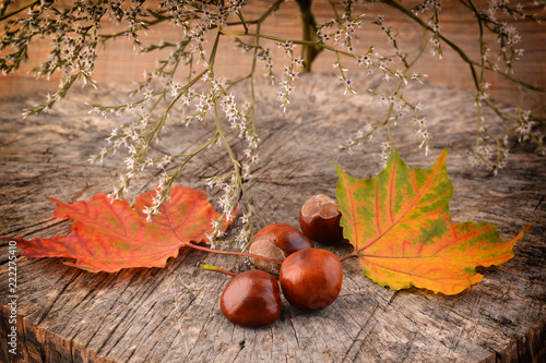 Chestnuts and leaves on wooden background.