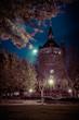 Wormser Wasserturm bei Nacht