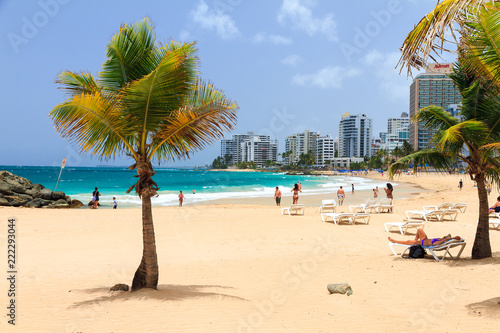 Photo Stands Caribbean Beautiful tropical palm trees at popular touristic Condado beach in San Juan, Puerto Rico