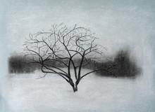 Pastel Painting Of Apple Tree ...
