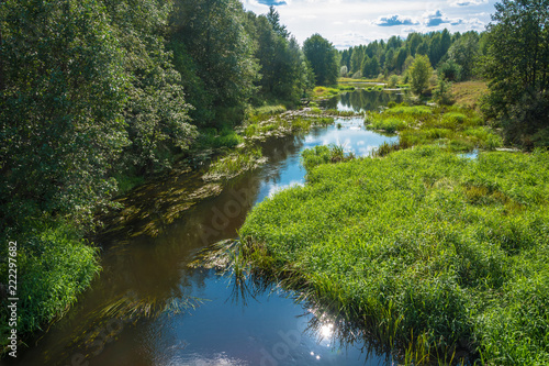 Staande foto Rivier Summer landscape with a small river.