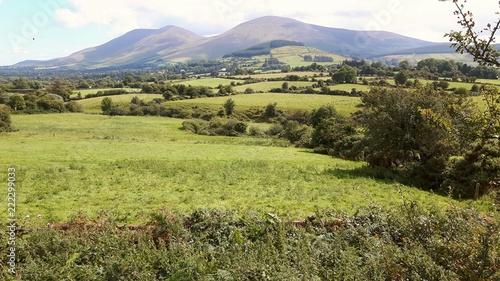 Foto op Canvas Pistache Nice View
