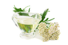 Yarrow (Achillea Millefolium) Herbal Plant Essential Oil. Isolated On White Background.