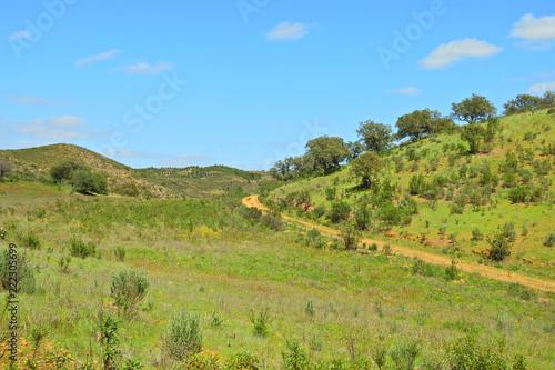 In de dag Blauw Rural Landscape in Algarve, Portugal