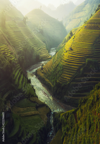 Poster Rijstvelden Vietnam Rice terraced