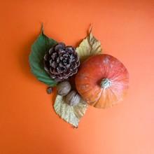 Composizione Frutta Secca E Zucca