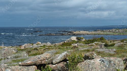 beautiful swedish landscape
