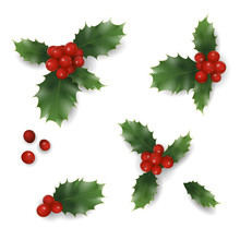 Realistic Christmas New Year Red Holly Berry Pattern. Vintage Winter Holiday Decoration Design Element Set Isolated 3d Render Mesh Gradient Seasonal Wallpaper Template White Vector Illustration