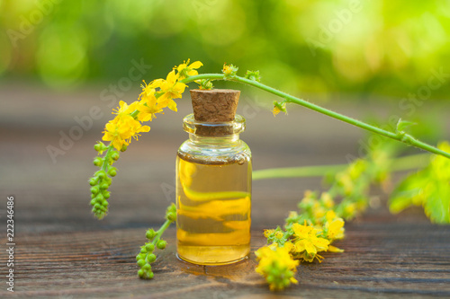 Photo Essence of Agrimonia flowers on table in beautiful glass Bottle